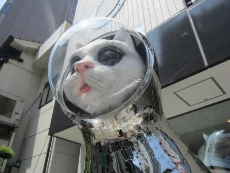 Ships-Cat-by-Kenji-Yanobe-5.jpg