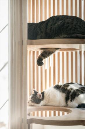 neko-cat-tree-3.jpg