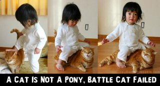 a-cat-is-not-a-pony-battle-cat-failed.jpg