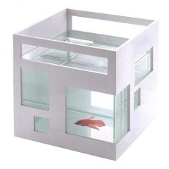 fishcondo.jpg