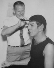 spock-haircut.jpg