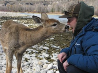 fisherman_meets_deer_3.jpg