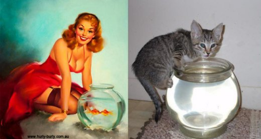 cats that look like pin-up models_6.jpg