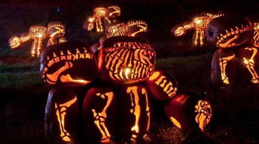 dinosaur_pumpkins_2.jpg
