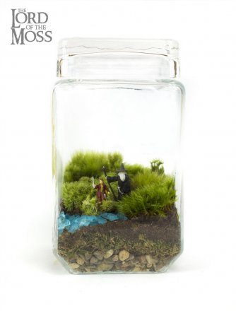 Moss Love - Lord of the Moss - Gandalf and Bilbo.jpg