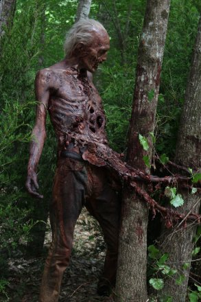 walkingdeadseason6zombies1.jpg