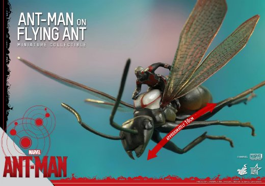 Hot-Toys-Antony-and-Ant-Man-Minature-Collectible-Set-006.jpg