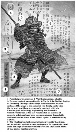 Chet-Phillips-Teenage-Mutant-Samurai-Turtles-5.jpg
