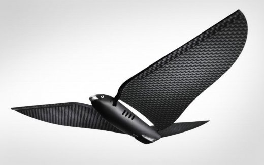 bionic-bird.jpg