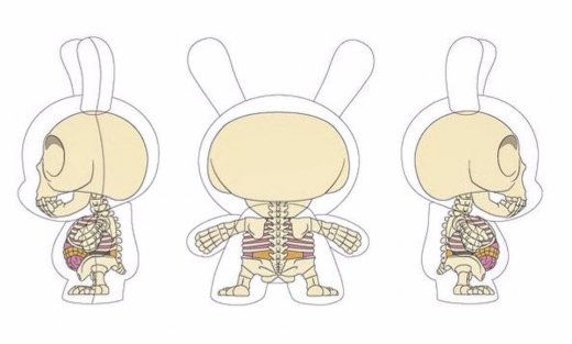 Jason Freeny X Kidrobot X Bigshot Toyworks Visible Anatomical Dunny.jpg