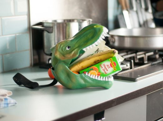 dino-head-lunchbox-1.jpg