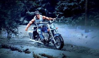 E0805-AVN-ULTIMATE-6-INCH-LEGENDS-Wolverine.jpg