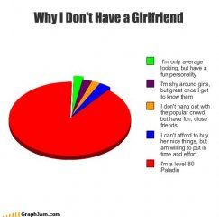 why you dont have a girlfriend.jpg