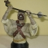 gentle_giant_star_wars_tusken_raider_bust_10.jpg