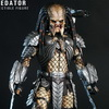 Hot Toys – MMS221 –Alien vs. Predator: 1/6th scale Celtic Predator Collectible Figure