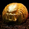 Toy Sculptor Wins Food Network Pumpkin Challenge